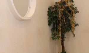 Чертановский ЗАГС - комната невесты