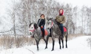 Фотосессии с лошадьми зимой, Москва
