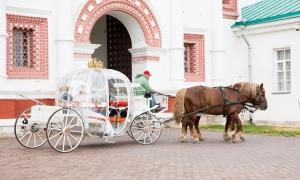 Выездная регистрация брака в Коломенском, карета с лошадьми