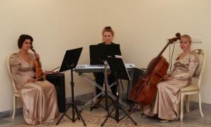 Солнцевский ЗАГС - оркестр