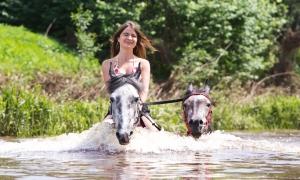 Фотосессии с лошадьми в речке, Москва